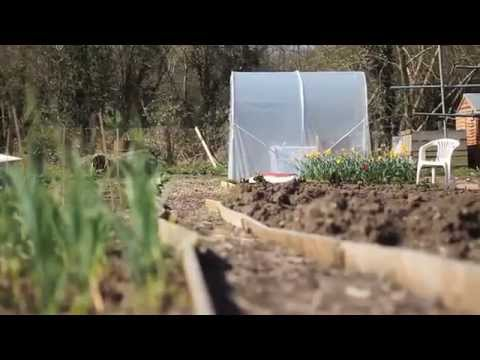 Herts and Essex Community Farm video 4