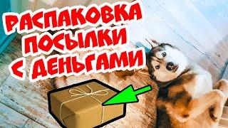DOGVLOG: ХАСКИ ПОЛУЧИЛ ПОСЫЛКУ С ДЕНЬГАМИ! Выполняю ЗАДАНИЯ ПОДПИСЧИКОВ. Говорящая собака