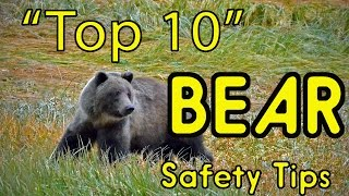 """Top 10"" BEAR Safety Tips (or HOW TO AVOID BEING EATEN ALIVE!)"
