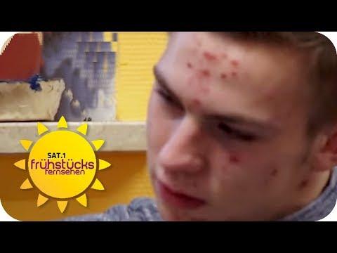 Pubertät: Der beste Umgang mit launischen Teenagern   SAT.1 Frühstücksfernsehen   TV