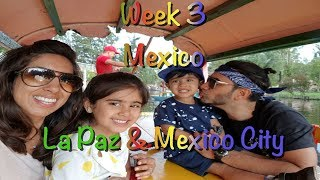 The Flip Flop Family - Week 3 - Mexico, La Paz & Mexico City
