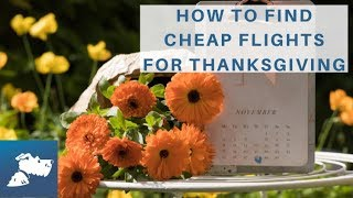 How to Find Cheap Flights for Thanksgiving | Airfarewatchdog