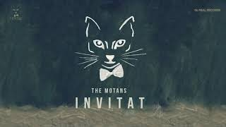 The Motans Invitat Official Audio