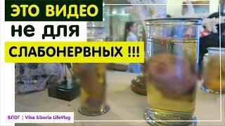#Видео не #для #слабонервных / Где Саша? / ВЛОГ/Vika Siberia LifeVlog