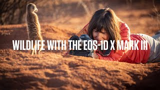 Video 5 of Product Canon EOS-1DX Mark III Full-Frame DSLR Camera