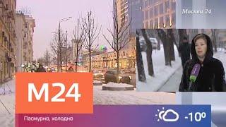 Морозы не уйдут из Москвы - Москва 24