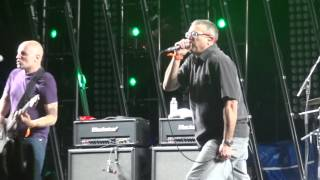 """Descendents """"rotting out"""" @coachella 2013, weekend 1"""