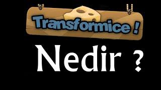 Transformice Nedir ?