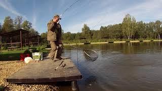 Платные водоемы для рыбалки в московской области