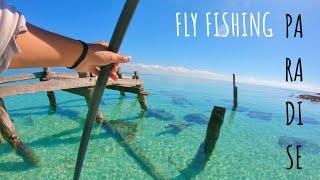 PARADISE IN MEXICO! (FLY FISHING SALTWATER) Caribbean ocean, Riviera Maya..