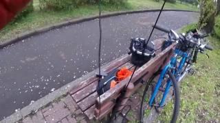 Endfed Antenna Setup