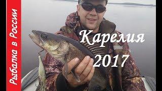 Открытие рыбалки в ленинградской области и карелии