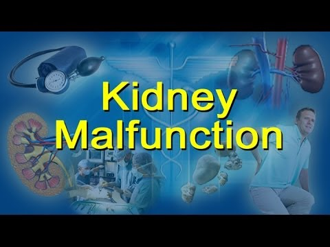 Video Kidney Malfunction Causes, Stages And Symptoms