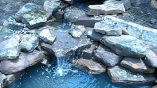 Pond Re-build