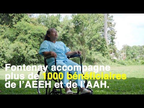 Handicapades