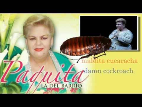 Paquita la del Barrio - Rata de dos patas (Lyrics in Spanish/English)