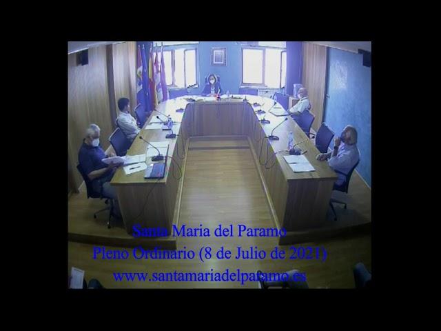 6.- Pleno Ordinario (8 de julio de 2021)