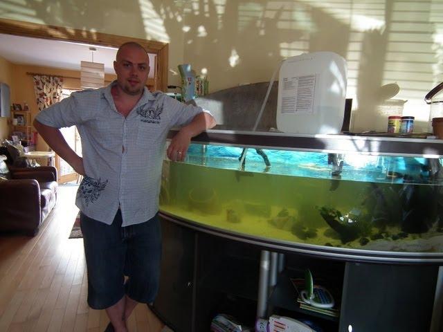 UK . water change in discus fish tank / PL . zmiana wody w akwarium z paletkami