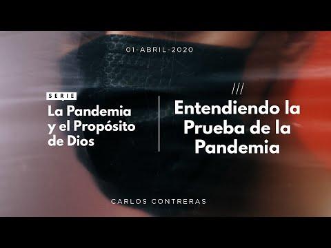 Entendiendo la Prueba de la Pandemia