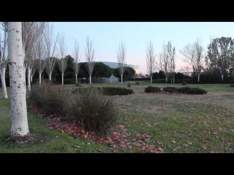 Recorrido Emocional El Prat de Llobregat