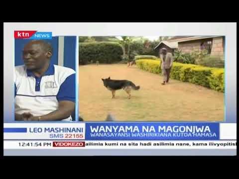 Wanyama na magonjwa | PART TWO