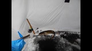 Ловля налима со льда на стукалку