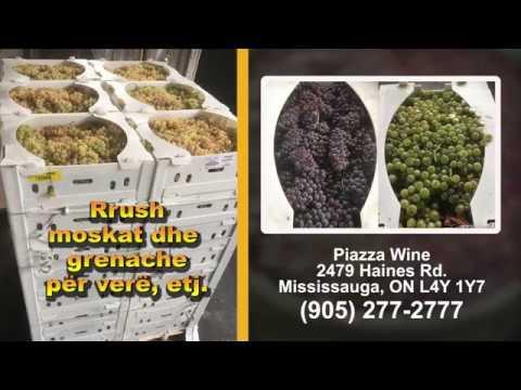 Piazza Wine - rrush për verë, etj.