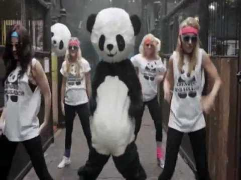 Wilda Panda aka W23 - PANDA STYLE (gangnam style mashup - Vodka King, Elephant Man, Fr