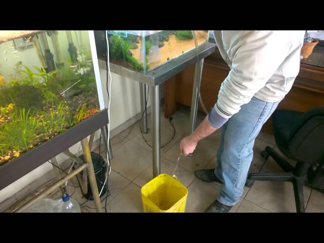 Cambio d'acqua in acquario