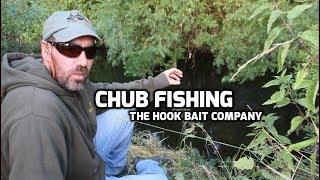Chub fishing with Dave Binns and The Hook Bait Company - (video 205)