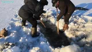 Зимняя рыбалка на тяге