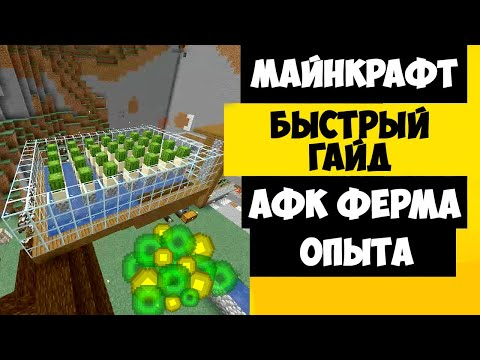 ФЕРМА ОПЫТА МАЙНКРАФТ / АФК ФЕРМА ОПЫТА