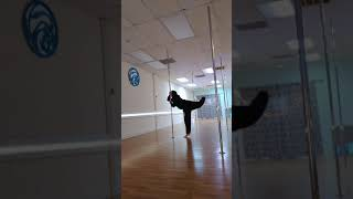 Warm-up Freestyle Pole Dance to Tranquilized by Acid Bath
