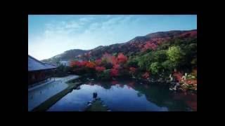 そうだ京都、行こう。 2016年・秋 天龍寺 | Kholo.pk