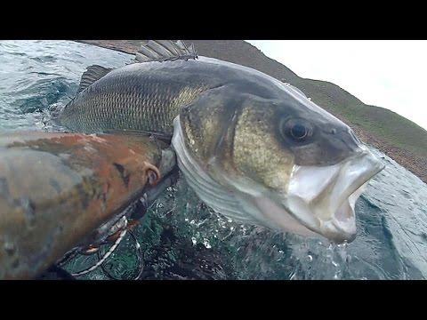 Bel lancio Yelets il russo che pesca 3