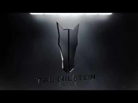 Tal Milstein Stables – Logo reveal
