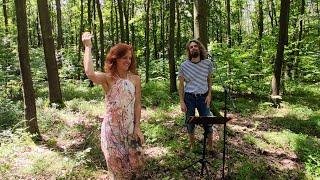 Video V lese