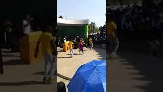 Sho Madjozi Performing Dumi Hi Phone