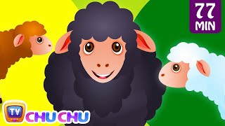 Baa Baa Black Sheep and Many More Kids Songs | Popular Nursery Rhymes Collection by ChuChu TV