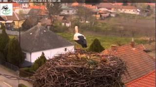 preview picture of video 'Nagyhalász - kerítésigazítás - 2015.04.12.'