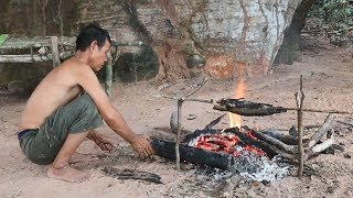 Primitive Solution,  The way to living And Finding Food in the Forest, Primitive Fishing and Cooking