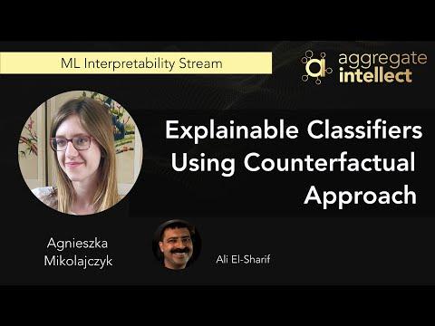 Explainable Classifiers Using Counterfactual Approach