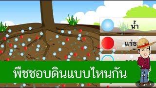 สื่อการเรียนการสอน ดินที่เหมาะต่อการเจริญเติบโตของพืชป.4วิทยาศาสตร์