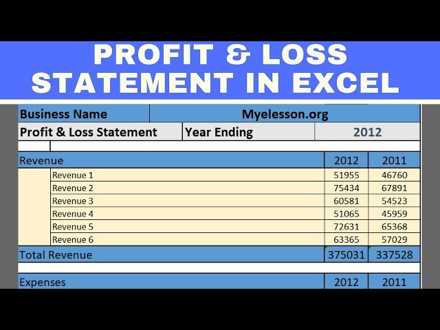 Make Profit and Loss Statement in Excel in Hindi ∼ MyElessonorg