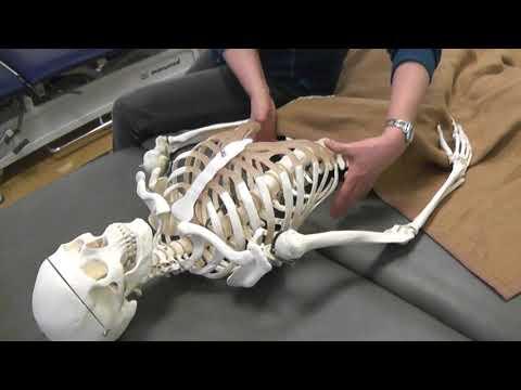 Vorsprung der Halswirbelsäule und Hernie Behandlung SHmorlja