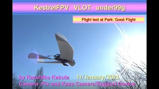 VLOT垂直離陸99g FPV機 KestrelFPV VLOT under99g: Flight at Park  Good flight
