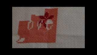 First Cross Stitch Vid & WIPs
