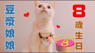 豆漿娘娘 八歲生日啦!!!🎂