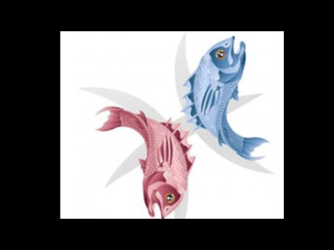Konzultációk a Trichomonas-szal