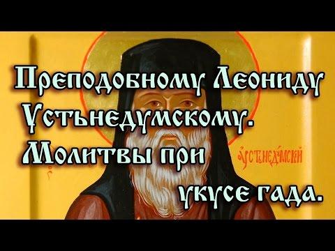 70.Преподобному Леониду Устьнедумскому.  Молитвы при укусе гада.